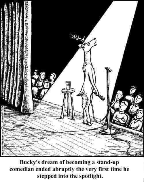 Buckystandup